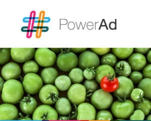Facebook Advertising service for small business